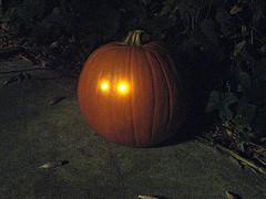 DarkPumpkin - 11